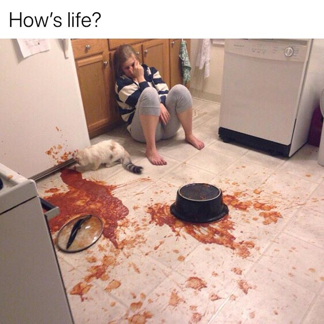 Sauce All Over The Kitchen Floor