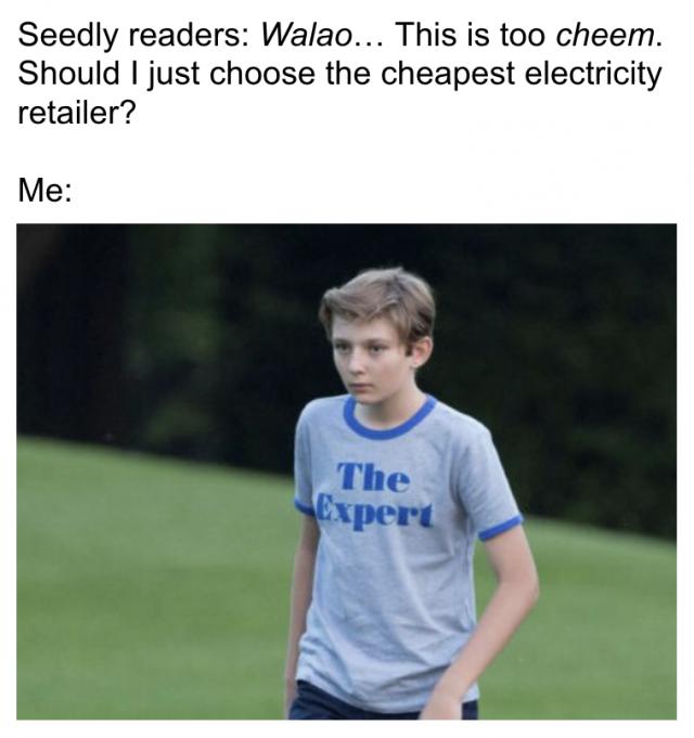 Electricity Market Expert