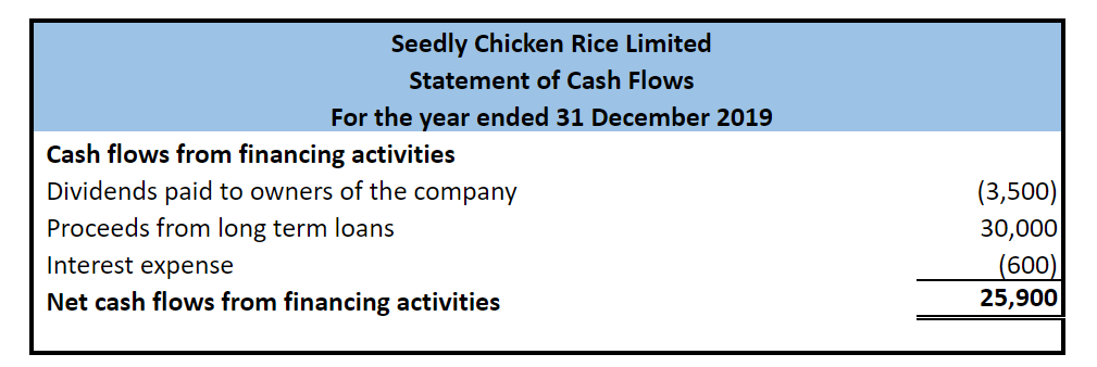 Seedly Chicken Rice Cash Flow Statement financing
