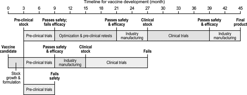 timeline for vaccine development (month)