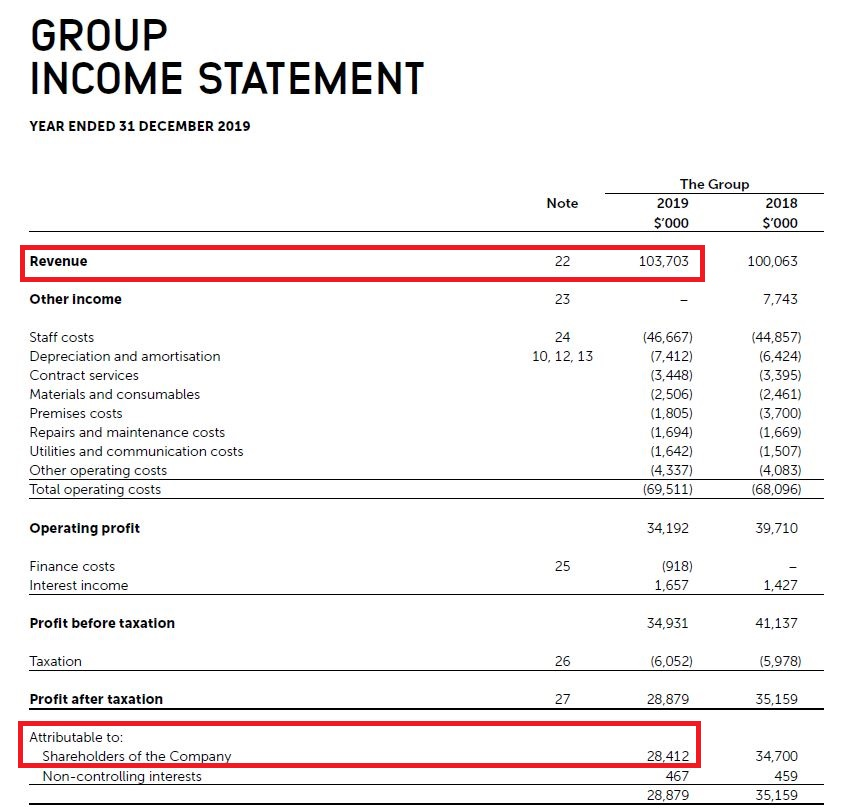 VICOM income statement 2019